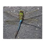 Dragonfly on Pavement Throw Blanket