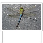 Dragonfly on Pavement Yard Sign