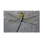 Dragonfly on Pavement Wall Decal