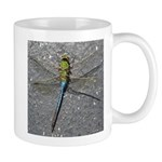 Dragonfly on Pavement Mugs