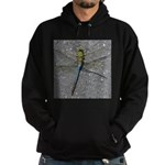 Dragonfly on Pavement Hoodie