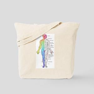 Human Anatomy Dermatomes and Cutaneous Ne Tote Bag