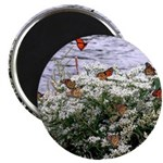 Monarchs on a Babys Breath Rest stop Magnets