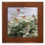 Monarchs on a Babys Breath Rest stop Framed Tile