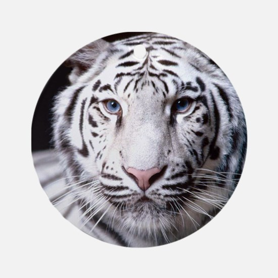 White Bengal Tiger Ornament (Round)