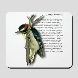 Downy Woodpecker Mousepad