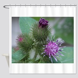 Flowering Tag a Longs Shower Curtain