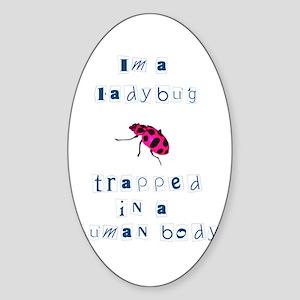 Ladybug PINK Oval Sticker