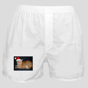 Christmas Orange Tabby Cat Boxer Shorts