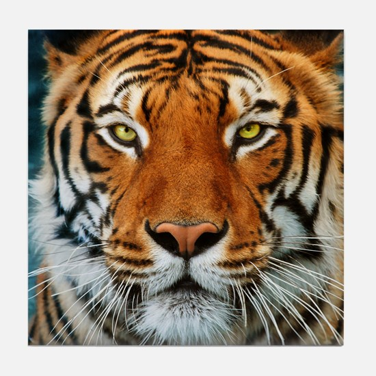 Tiger in Water Photograph Tile Coaster