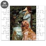 CLK-OPH2-GoldBanj1 Puzzle
