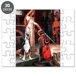 ACCOLADE-GSMD1 Puzzle