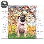 SPRING-Pug1 Puzzle