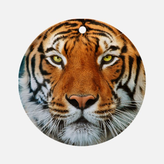 Tiger in Water Photograph Ornament (Round)