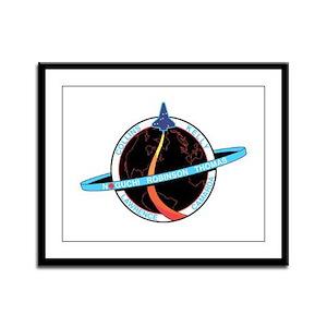 STS-114 Mission Logo Framed Panel Print