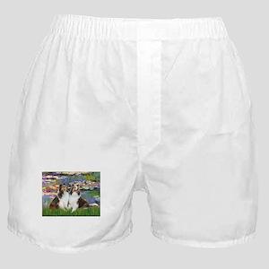 MP-Lilies 2 - 2 Shelties (D&L) Boxer Shorts