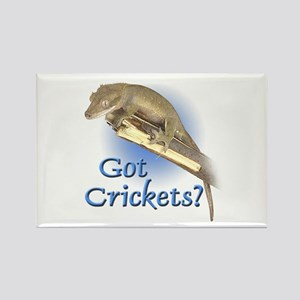 Crested Gecko Rectangle Magnet