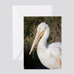 Pelican Profile Greeting Cards