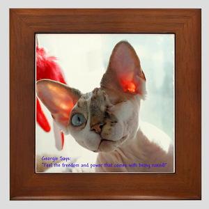 Little George Hairlesson, Freedom & Power Framed T