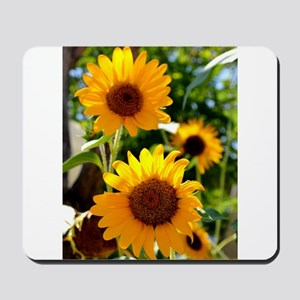 Sunflowers Old Town Albuquerque Mousepad