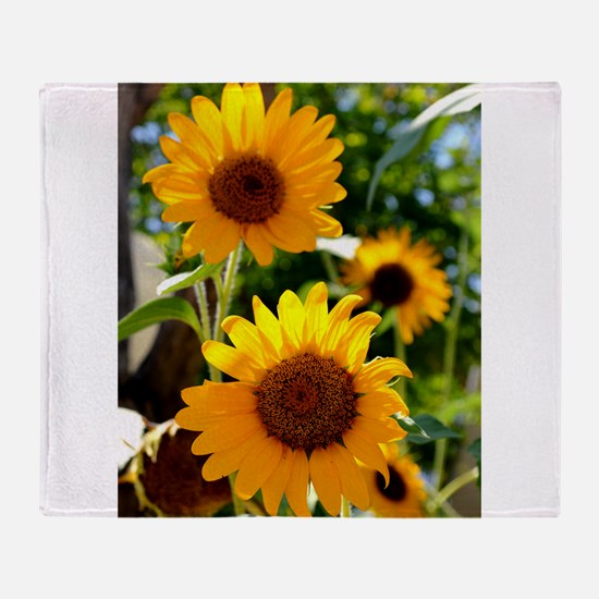Sunflowers Old Town Albuquerque Throw Blanket