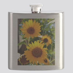 Sunflowers Old Town Albuquerque Flask