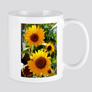 Sunflowers Old Town Albuquerque Mugs