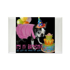 ITS MY BIRTHDAY Rectangle Magnet (100 pack)
