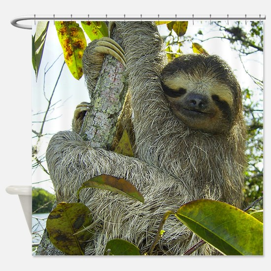 Sly Sloth Shower Curtain