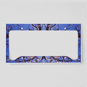 Kama Sutra Tree License Plate Holder