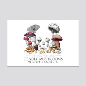 Deadly Mushrooms of North Americ Mini Poster Print