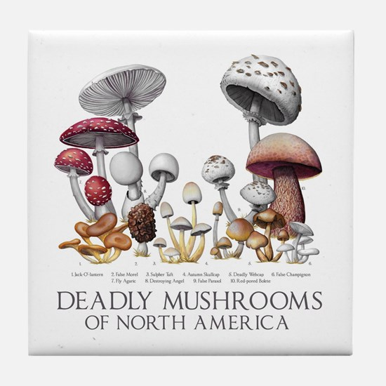 Deadly Mushrooms of North America Tile Coaster