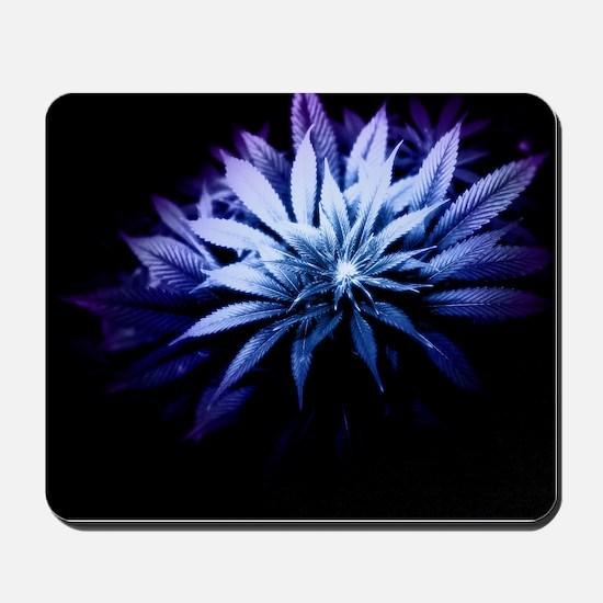 Blue Kush Mousepad