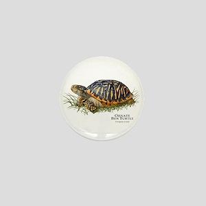 Ornate Box Turtle Mini Button