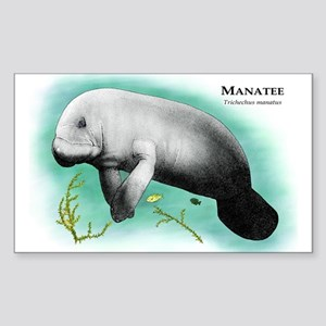 Manatee Rectangle Sticker