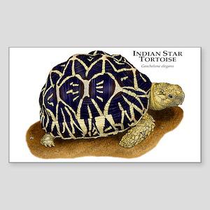 Indian Star Tortoise Rectangle Sticker