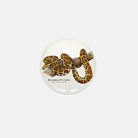Burmese Python Mini Button