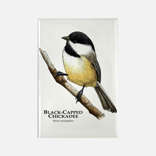Black-Capped Chickadee Rectangle Magnet