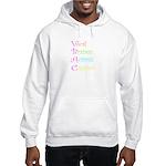 VBAC ABCs Pink Vocal Hooded Sweatshirt