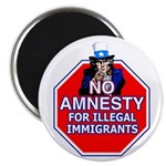 No Amnesty Magnet