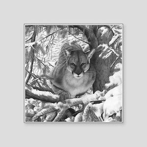 Mountain Lion Hideout Sticker