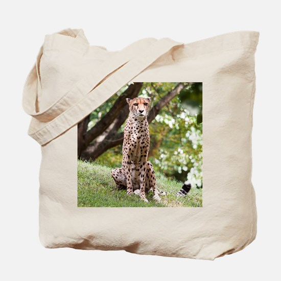 Watching Cheetah Tote Bag