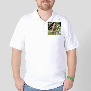 Watching Cheetah Golf Shirt