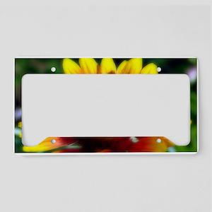 Summer Sun License Plate Holder