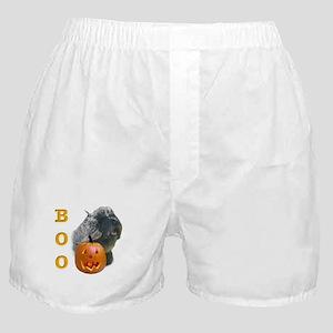 Bouvier Boo Boxer Shorts