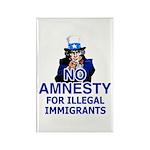 Amnesty Rectangle Magnet (10 pack)