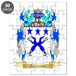 Gilshenan Puzzle