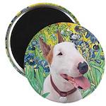 Bull Terrier (B) - Irises Magnet