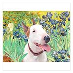 Bull Terrier (B) - Irises 5.25 x 5.25 Flat Cards