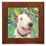 Bull Terrier (B) - Irises Framed Tile
